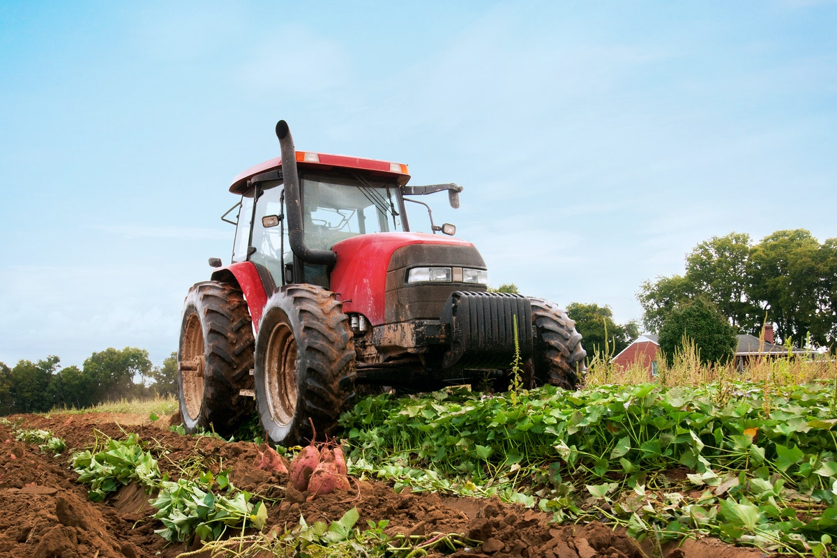 Tractor driving through a crop field