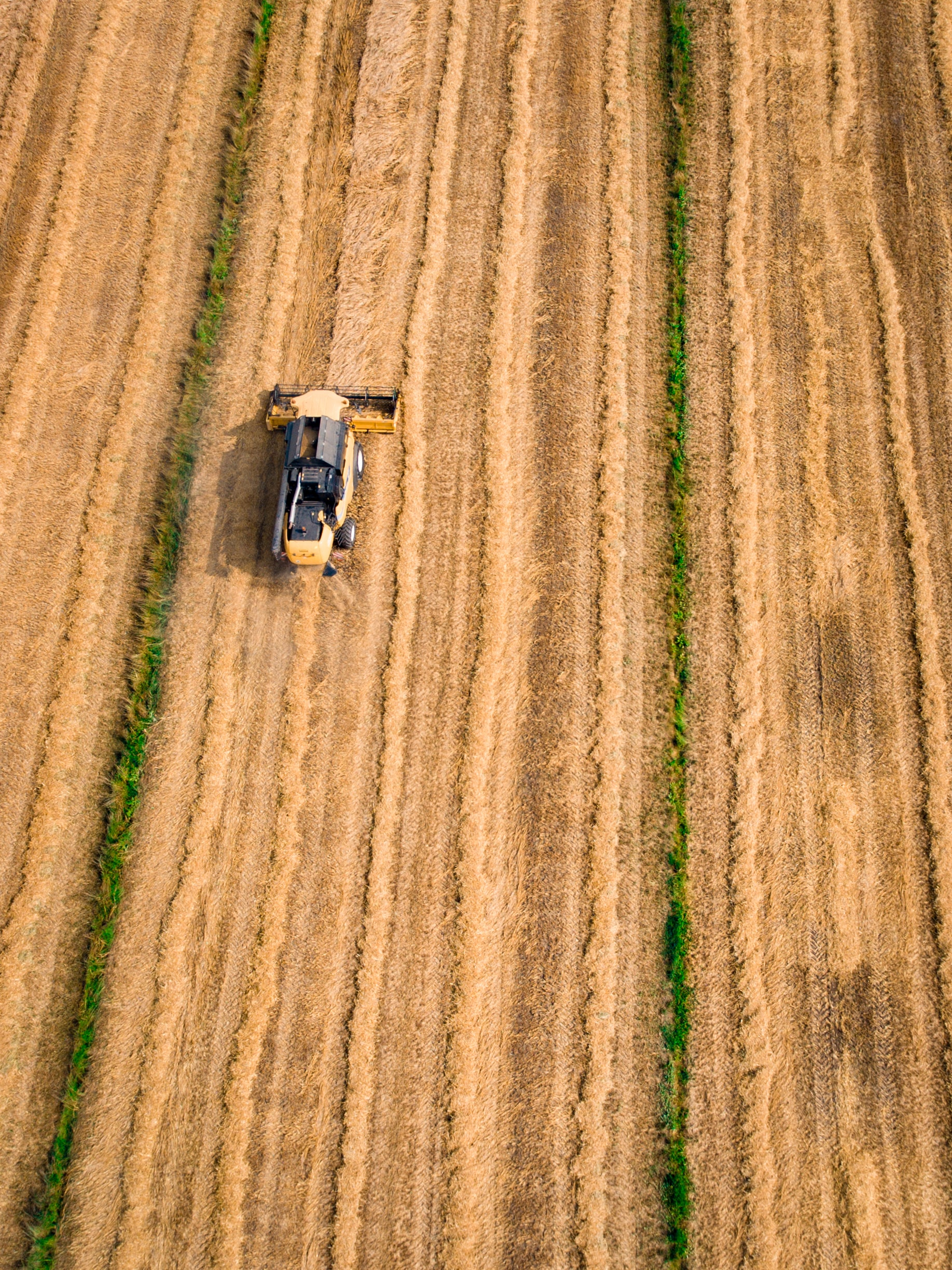 Drone photo of a tractor harvesting crops